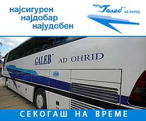 Galeb